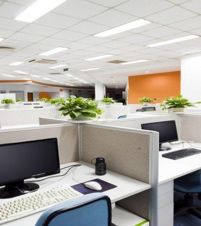 office interios
